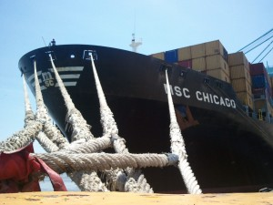 MSC_chicago