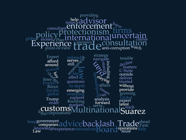 strategic analysis of international trade policy